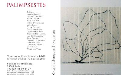 Exposition «Palimpsestes» – Galerie Schumm-Braunstein – Paris, du 1 juin au 8 juillet 2017