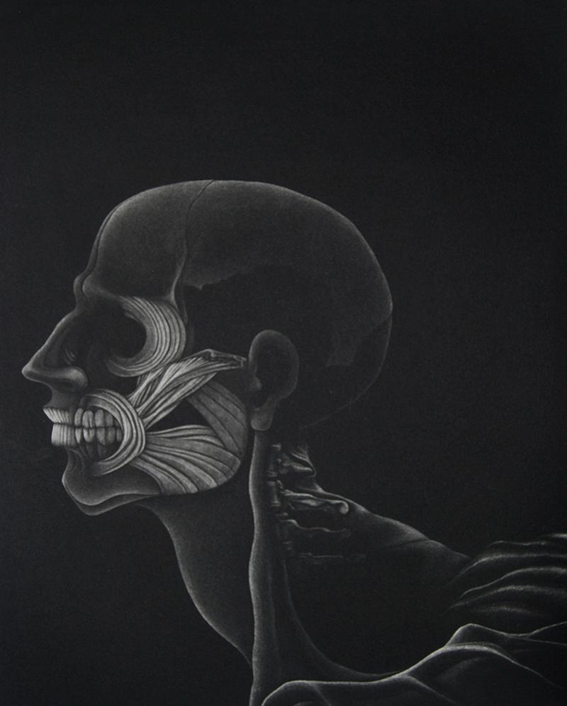 compagnon-d'ame-maniere-noire-2012